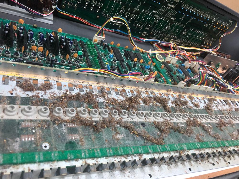 Roland Juno-106 Keybed Wide